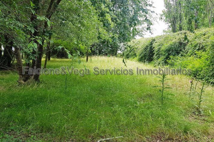 Inmobiliaria falcionevega 0304 hermoso lote en villa for Inmobiliarias en belgrano